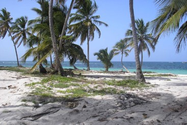 Huge Beachfront Property near Bavaro