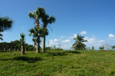 Building Lot with Ocean View in Cabarete