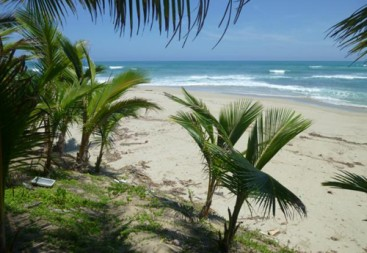 Beautiful and well-proportioned beachfront lot at the kite beach Cabarete