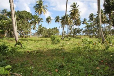 Beachfront Lot in Cabarete with 150 meters beachfront