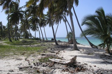 Beautiful ocean front land near Bayahibe