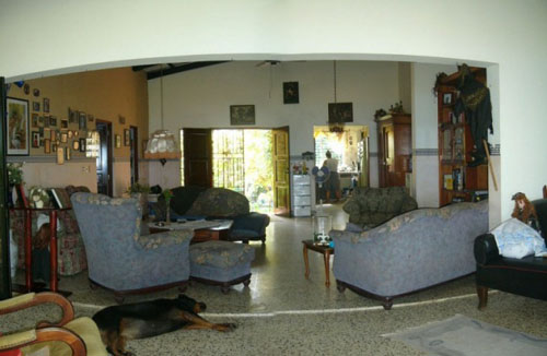 #5 Oceanfront House in Sosua for sale