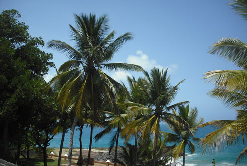 #0 Oceanfront House in Sosua for sale