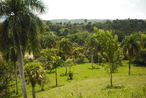 #3 Small Farmland with Marvellous View Sosua