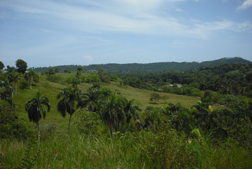 #5 Small Farmland with Marvellous View Sosua