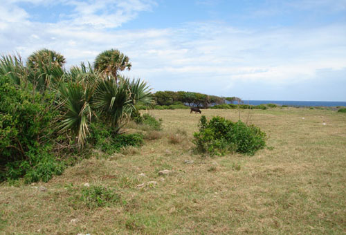 #5 Oceanfront development land at unbeatable price