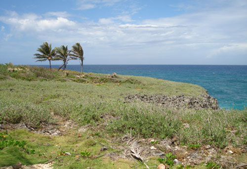 #3 Oceanfront development land at unbeatable price