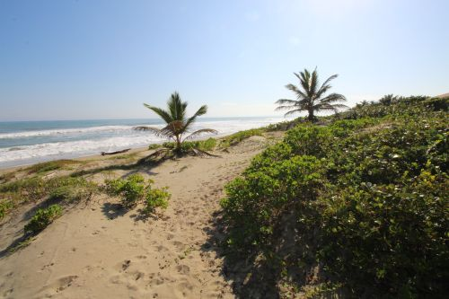 #3 Beachfront Apartment with one bedroom in Cabarete