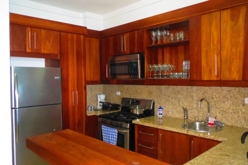#9 Five bedroom two level luxury penthouse right on the beach - Sosua Vacation Rentals