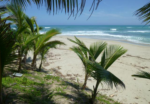 #0 Beautiful and well-proportioned beachfront lot at the kite beach Cabarete