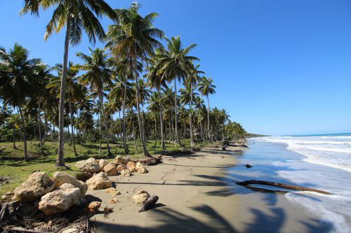 #0 Excellent beachfront lot in unspoilt location