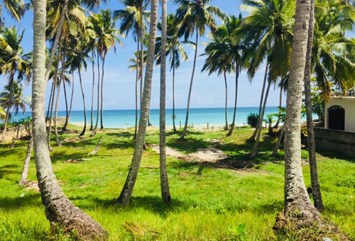 #6 Excellent beachfront lot in unspoilt location