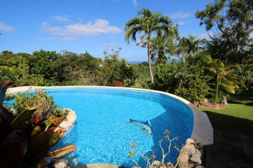 #15 Charming Sosua villa with a large lot and ocean views