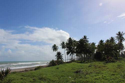 #9 Stunning Beachfront Land With Wide Frontage