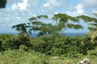 Property with Ocean View in Sosua
