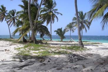 Beachfront Properties Real Estate Dominican Republic Luxury