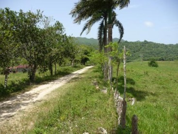 Farmland with 2500 meter river Sosua