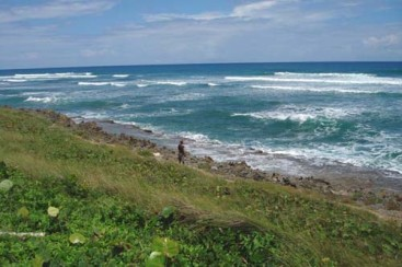 Prime beachfront land Cabarete
