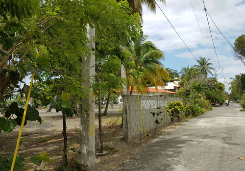 #5 Beachfront land in a quiet area of high quality properties - Bani