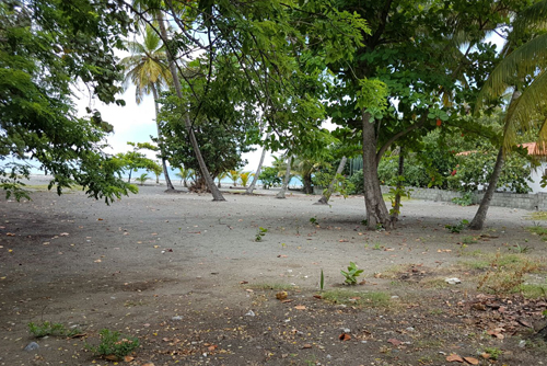 #2 Beachfront land in a quiet area of high quality properties - Bani