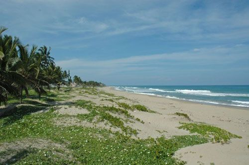 #2 Beachfront property with approx. 30 meters front in Cabarete