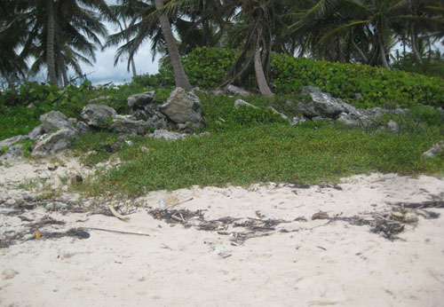 #2 Magnificent beach front land near Punta Cana