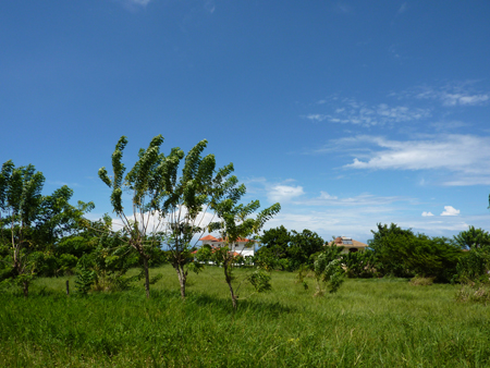#3 Building Lot within Gated Community and Ocean View Cabarete