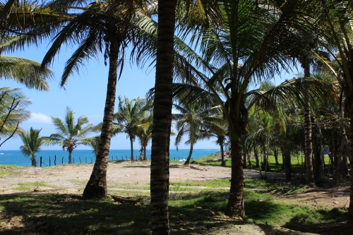 #7 Kite Beach Property - Prime beachfront land with wide frontage