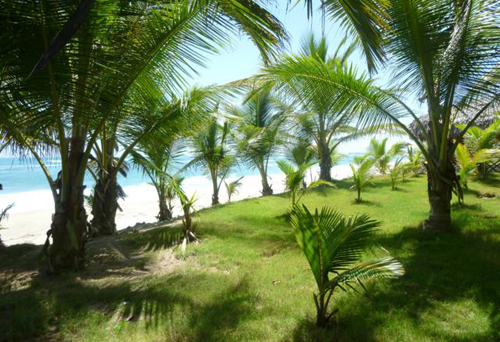 #2 Kite Beach Property - Prime beachfront land with wide frontage