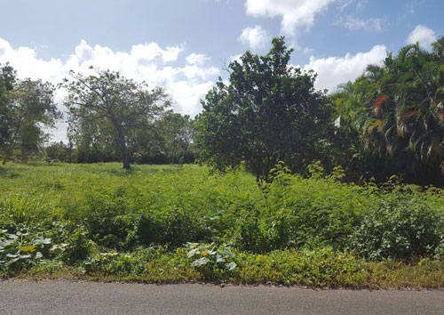 #4 Nice building lot in Guavaberry Country Club Juan Dolio