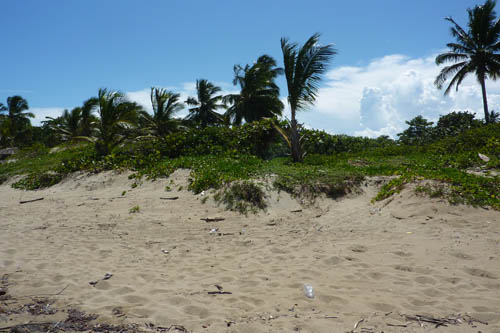 #6 One of the last beachfront parcels in Cabarete