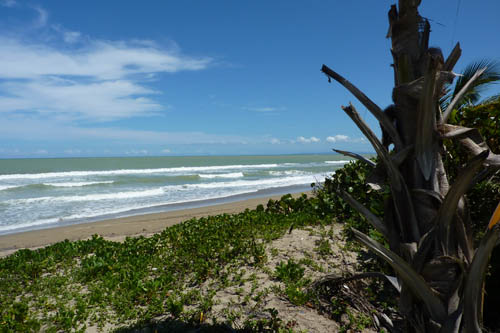 #0 One of the last beachfront parcels in Cabarete