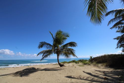 #9 Excellent hotel or retreat opportunity in Cabarete