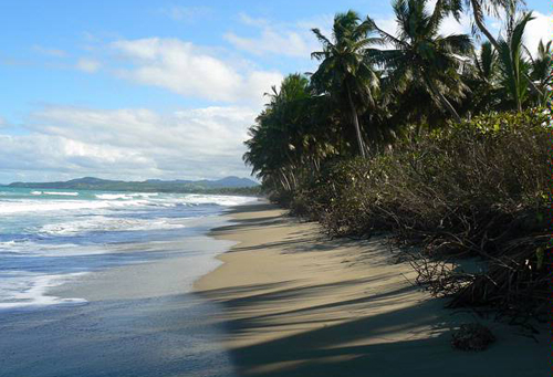 #6 Beach front lot for sale near Cabarete