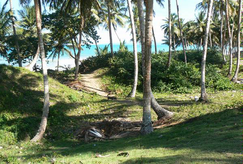 #4 Beach front lot for sale near Cabarete