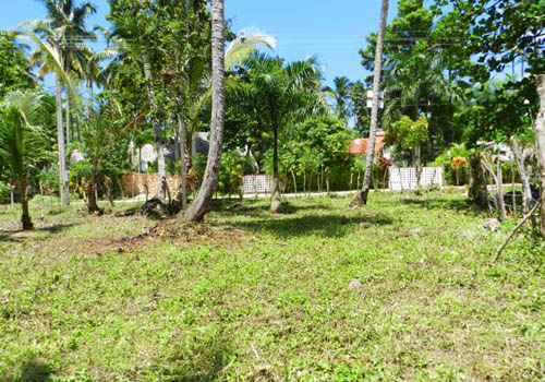 #2 Nice lot in second line beach near Coson Beach