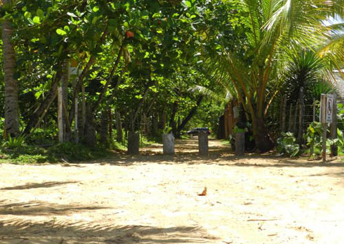 #1 Nice lot in second line beach near Coson Beach