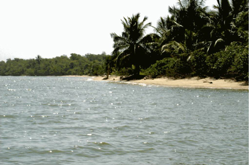 #2 Magnificent beach front land near Samana