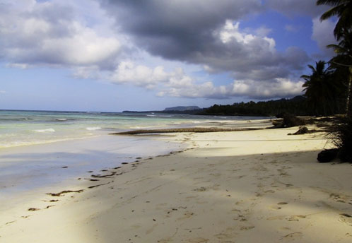 #4 Magnificent beach front land near Samana