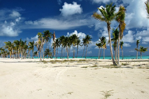 #4 One of the best beachfront parcels in Juanillo Beach - Punta Cana