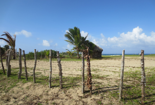#2 Beautiful and well-proportioned beachfront lot at the kite beach Cabarete