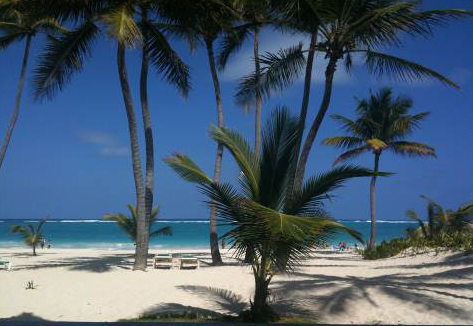 #4 Fully furnished beachfront condo in Bavaro
