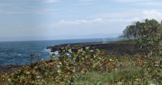 #4 Oceanfront Land in unspoilt area of Samana