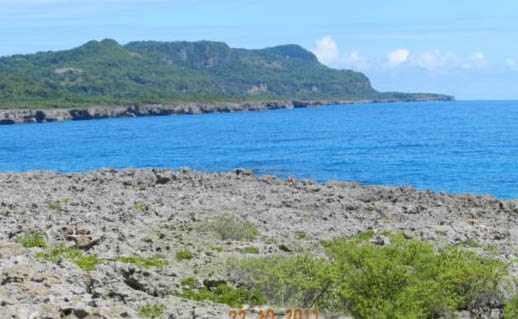 #3 Oceanfront Land in unspoilt area of Samana