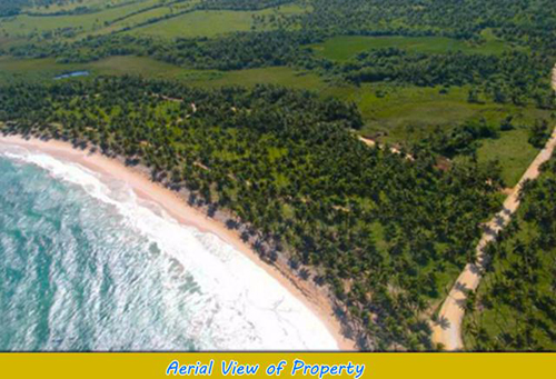 #3 Beautiful oceanfront lots at very competitive price - Cabrera