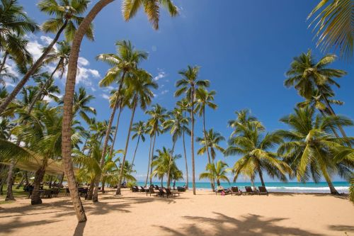 #0 Beautiful 3 bedroom beachfront apartment - Las Terrenas