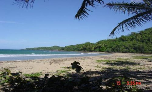 #3 Development Land Samana