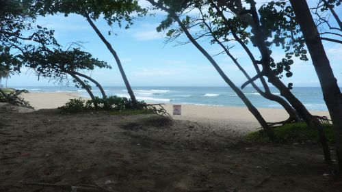 #4 Property with 160 Linear Meters of Beachfront near Cabarete
