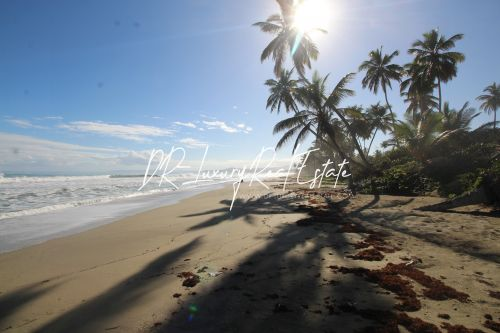 #1 Beach front lot for sale near Cabarete
