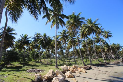#9 Excellent beachfront lot in unspoilt location